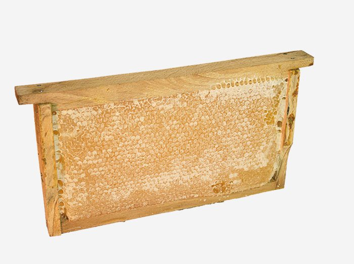 Small Gourmet Slat Honeycomb